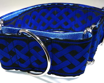 2 Inch Blue Celtic Knot Jacquard Ribbon on Seat Belt Martingale Collar
