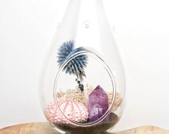 "DIY Amethyst Crystal Terrarium Kit ~ Includes 6.75"" Clear Glass Hanging Terrarium, accessories, Gift"
