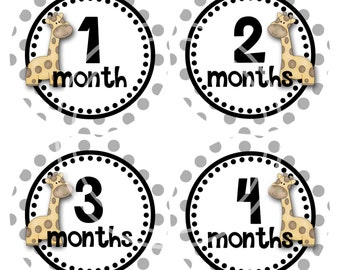 Baby Monthly Milestone Stickers Growth Stickers Month Stickers Gray Dots with Giraffe Baby Stickers B132b