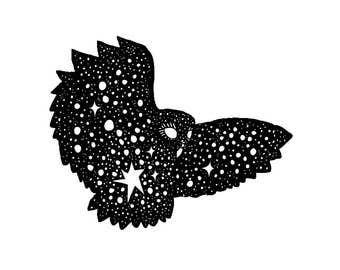 Starry Owl Ink Drawing Digital Art print