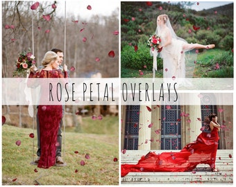 Pink And Red Rose Petals Photoshop Overlays, Rose Petals, PNG Overlays, Photo Overlays, Valentines Overlays, Photo Effect,