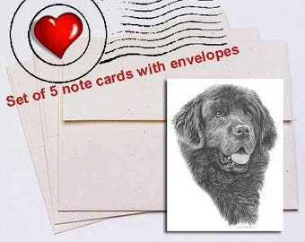 Newfoundland Pencil Note Card Set