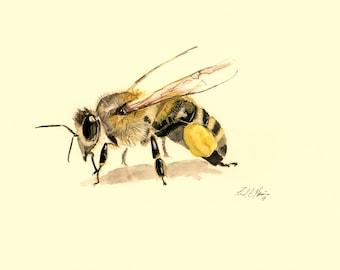 Honeybee Print