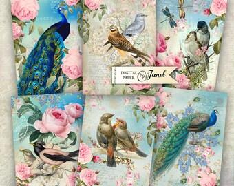 BIRD Vintage Cards - digital collage sheet - set of 6 - Printable Download