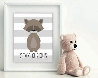 Stay Curious Little Raccoon, nursery art, woodland nursery, nursery decor, nursery print, nursery decor, racoon wall art, raccoon printable