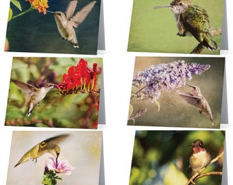 Hummingbirds blank note cards - pack of 6 different cards, Gifts for her, Gifts for mom, Gifts for nature lovers, Gifts for bird lovers,