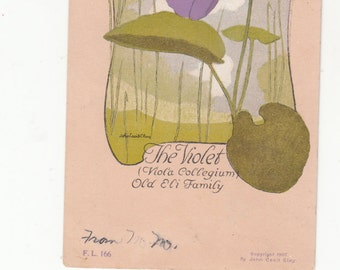 The Violet Fantasy Flower Lady Art Nouveau By John Cecil Clay Postcard 11907 Undivided