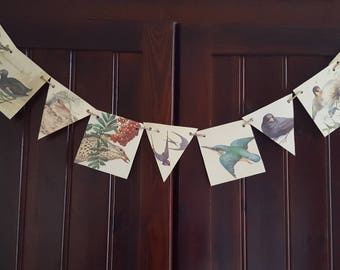 Bird Paper Bunting, Country Diary Of An Edwardian Lady, Eco Friendly Banner, Nature Garland, Paper Garland, Party Decoration.