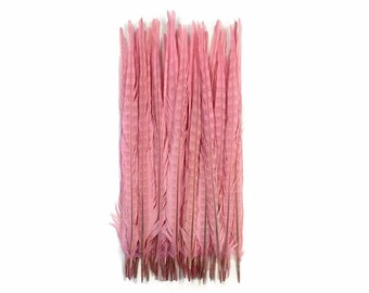 """Pheasant Feathers, 10 Pieces - 20-22"""" LIGHT PINK Ringneck Pheasant Tail Feathers : 4143"""