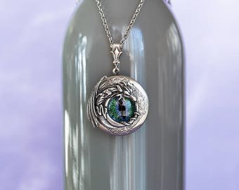 Dragon Locket Dragon Necklace Dragon Jewelry Dragon Gifts Serpent Photo Locket Necklace Secret Locket Antique Silver Gift for Her