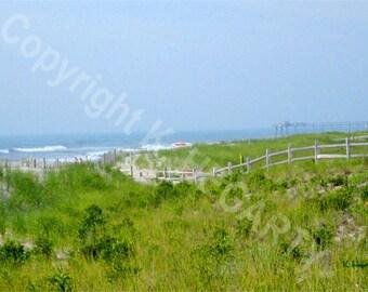 Photograph - Beach Landscape