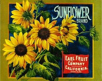 Los Angeles Sunflower Orange Citrus Fruit Crate Box Label Art Print