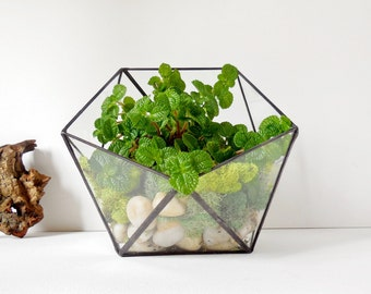 Glass Terrarium, Wedding Gift, Gift For Her, Gift For Girlfriend, clear glass planter geometric icosahedron. Made to order