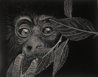 Wildlife scratchboards made to order