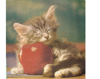 Set of 3 napkins ANI022 kitten sleeping on a Apple