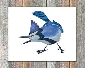 Blue Jay Bird Print