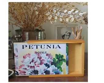 wooden keepsake box with sliding lid. Made in Vermont. Lid image petunia print from vintage seed pack.