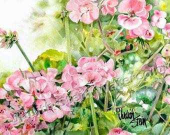 "Pink Geranium Flowers Patio Garden, Fuchsia, Green, Watercolor Painting Print, Wall Art, Home Decor, ""Geranium Glory"""