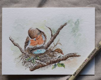 Robin with the nest (love of a parent) watercolor card prints