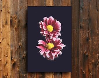 Tickled Pink - Pink flowers art - Pink flowers wall decor - Flowers photography - Flowers decor - Pink flowers fine art