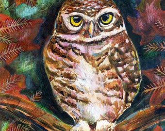 Spotted Owl -Archival Print