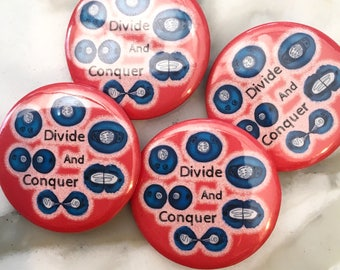 Divide and Conquer Cell Division Pin Back Button