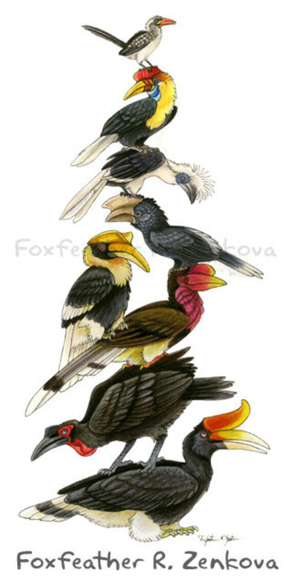 Hornbill Stack Painting Print Wall