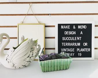 Create a succulent terrarium or vintage planter class