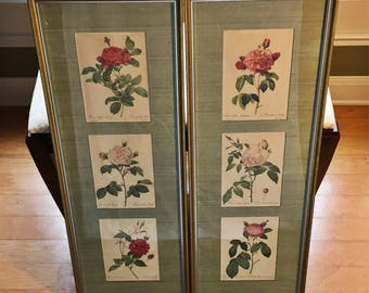 Redoute Rose Prints Floral Lithographs Framed/Matted