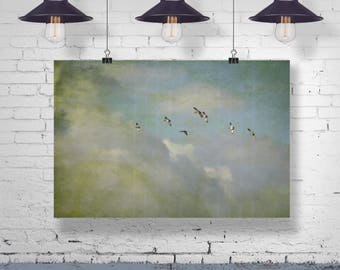 Bird cloud clouds Sky heavens sky wall art vintage fine art print poster from 45 x 30 cm