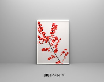 Abstract wall art Red print, modern  print, abstract print, Fruit art print, prints, large print, digital print, glicee, black and white