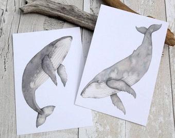 Whale postcard set - Humpback whale - watercolour whales - whale cards - postcard art print - postcard set