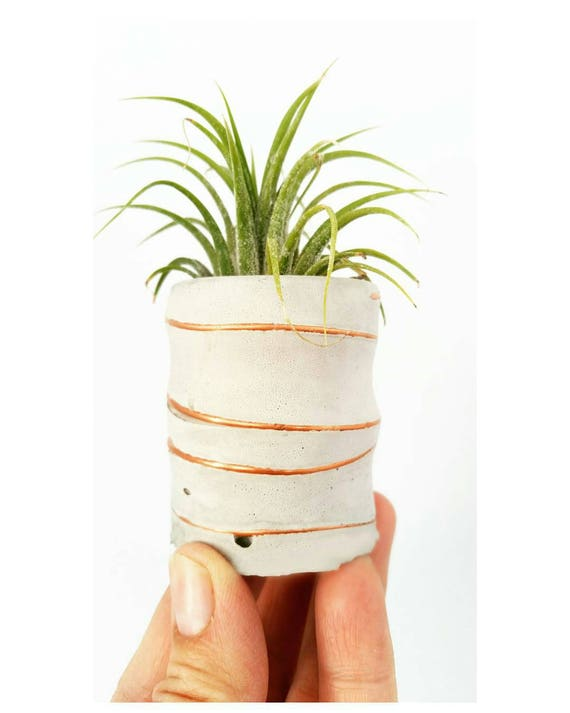 Concrete Air Planter/Modern Planter/Small Air Planter/Office Planter/Succulent Planter/ Indoor Planter/Desk planter/Dorm decor/Minimalist