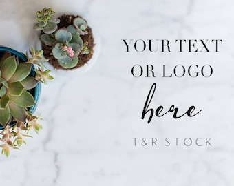 Styled Desktop, Website Stock Photos, Flat Lay Succulents, Stock Pictures, Photo Stock, Image Stock, Desktop Mockup, Stock Photography