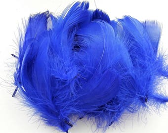 set of 10 feathers blue 5-10cm