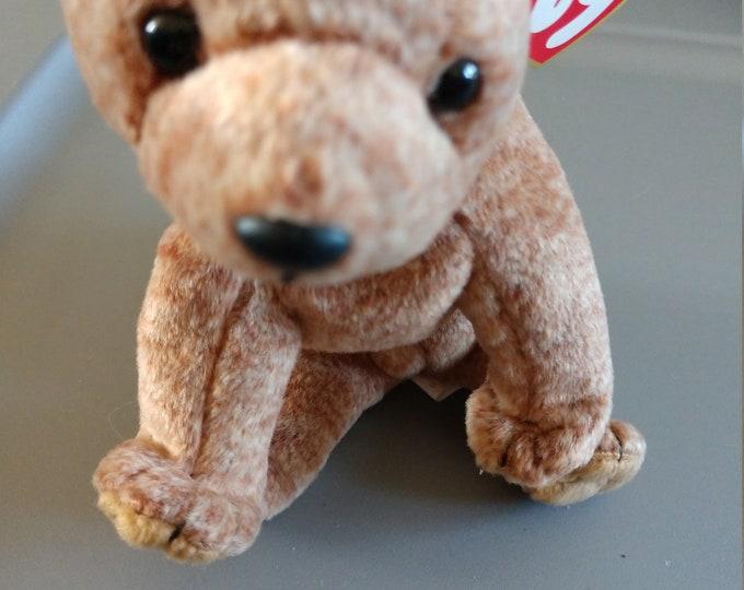 Pecan the Bear - Ty Beanie Babies - 1999