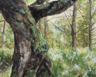 The Scots Pine Painting Print