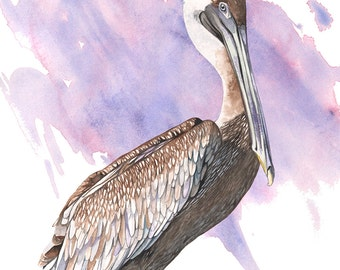 Pelican print of watercolor painting P2516, pelican watercolor, beach house wall art, purple and brown wall art, coastal decor, A3 size