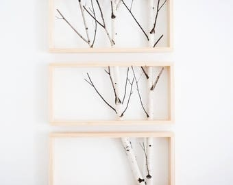 white birch forest wall art, birch branch decor, birch log, wall hanging, modern rustic wall decor, framed birch art