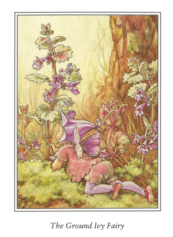 Ground Ivy Fairy Cicely Mary Barker Flower Fairies Vintage