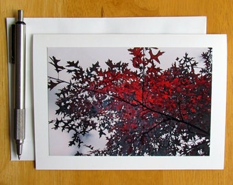 Oak Leaves Card, Leaves Note Card, Photo Note Card, Notecards, Blank Cards, Nature Note Cards, Tree Note Cards, Stationery, Unique Note Card