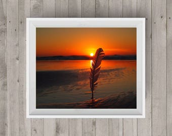 Sunrise Feather Sunrise Photography Sunrise Feather Photo Beach Photography Photography Art Digital Image Downloadable Print Wall Art