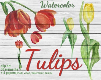 30 Digital  Watercolor Tulips clip art, floral Digital Collage,  Instant Download, clip 82