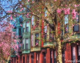 Boston Prints, Boston Photography, Row House Prints, Back Bay, Spring Decor, Cherry Blossoms, Victorian Decor,Old Windows,Boston Brownstones