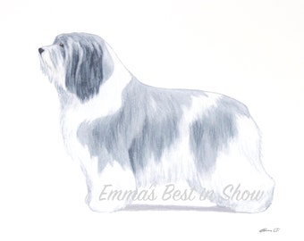 Polish Lowland Sheepdog - Archival Quality Art Print - AKC Best in Show Champion Dog - Breed Standard - Herding Group - Original Art Print