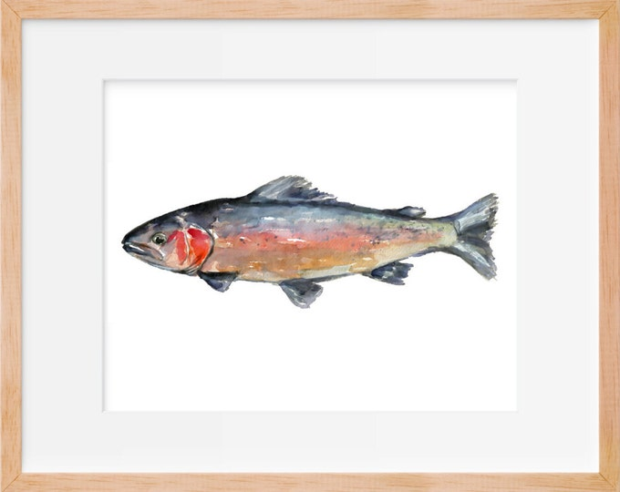 Rainbow Trout 102 Print, Hunting and Fishing, Fly Fishing, Fish Art, Fishing Decor, Trout Print, Fishing Wall Art