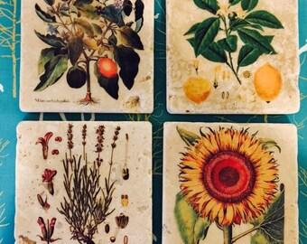 Botanical Marble Tile Coasters- set of 4 // Botanical // Lemons // Sunflower // Lavender // Floral // Grow // Plants