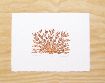 "Woodblock Print - ""To Calm You"" - Yoga Plant - Printmaking"