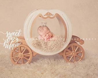 Newborn Digital Backdrop.  Cinderella Carriage or Princess Carriage. Newborn digital prop. Instant download.