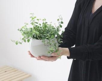 Ceramic planter in gray and white, succulent planter, air plant holder, Modern planter,succulent planters,indoor planter,plant pot,planters.